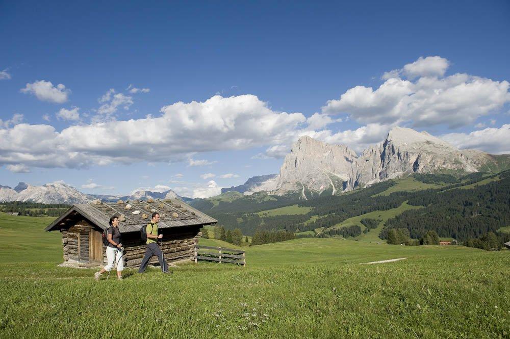 Scoprite la primavera al maso Florerhof sull'Alpe di Siusi in Alto Adige
