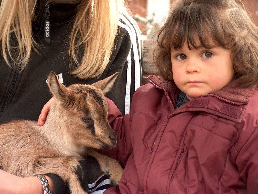 Kinderparadies Florerhof - Bauernhofurlaub mit Kindern