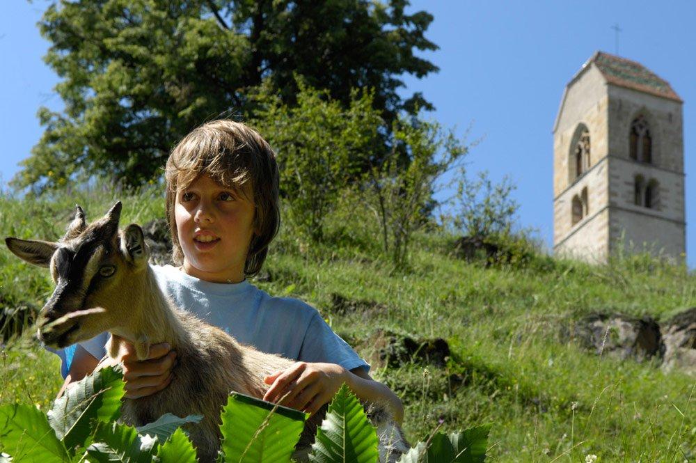 Vacanze in agriturismo sull'Alpe di Siusi